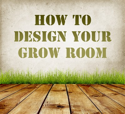 How To Design Your Grow Room