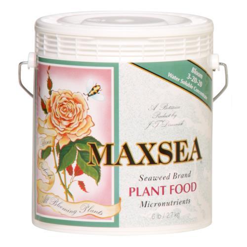 Maxsea® Bloom Plant Food  3 - 20 - 20