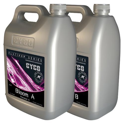 CYCO Bloom A 3 - 0 - 3 & B 1 - 5 - 6