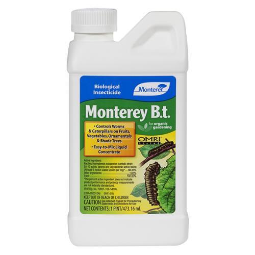 Monterey B.t.