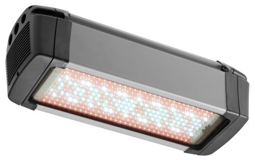 Osram Zelion® HL300 Grow White LED Light